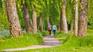 2 Menschen beim spazieren gehen